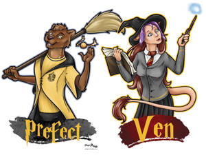 Prefect and Ven Hp Badges