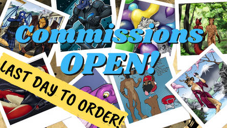 Last Day to Order a Commission!