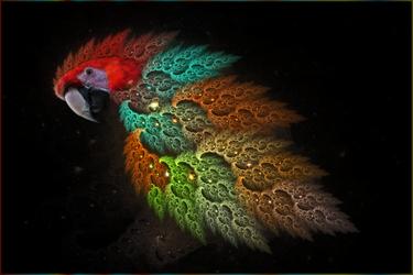 Parrotin' by ScraNo