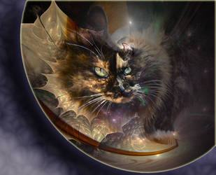 Catswold Portal by ScraNo