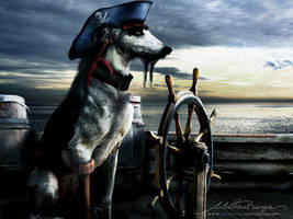Dogg, the pirate by Rungue