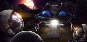 The CatSpace