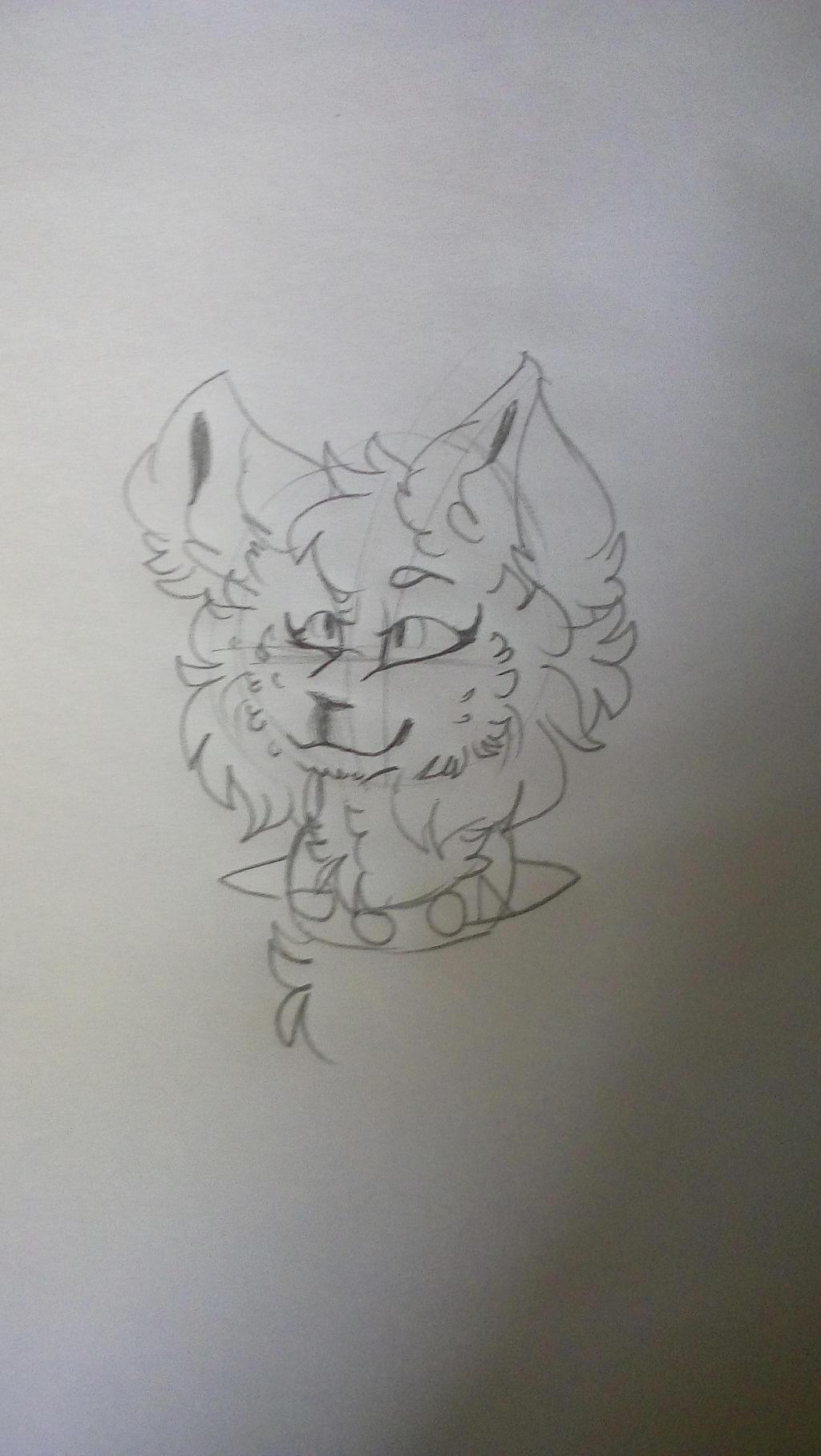 sketch fox by Cappuccinno