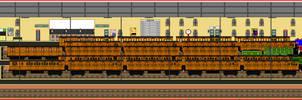 Express Passenger trains