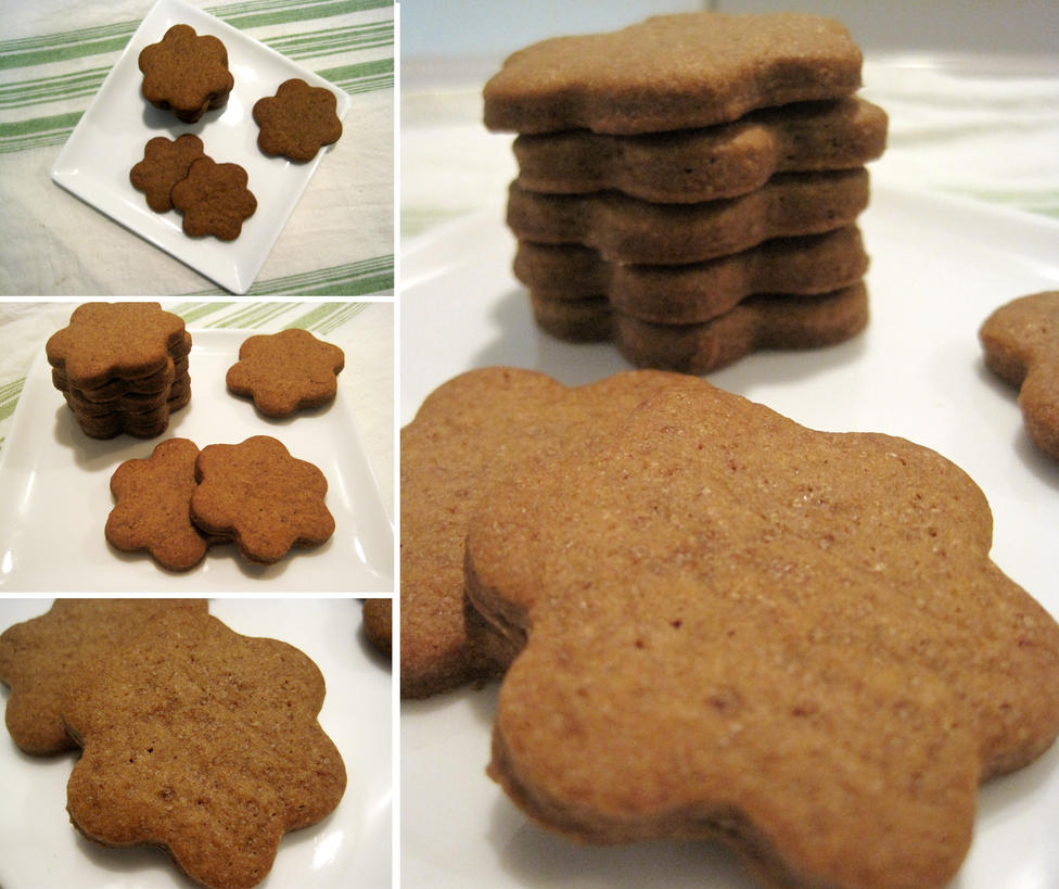 Speculoos by flameshaft