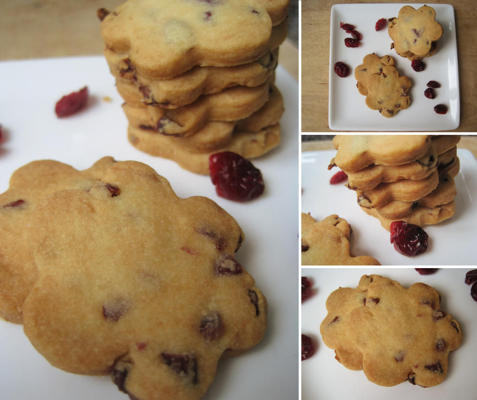 Cranberry Shortbread Cookies by flameshaft