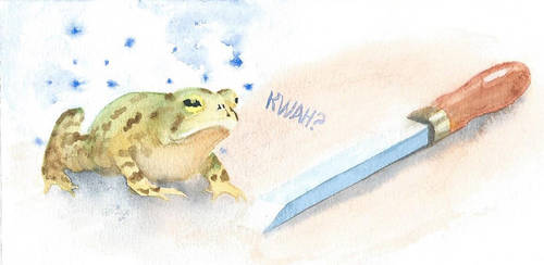 Little Toad by Armel