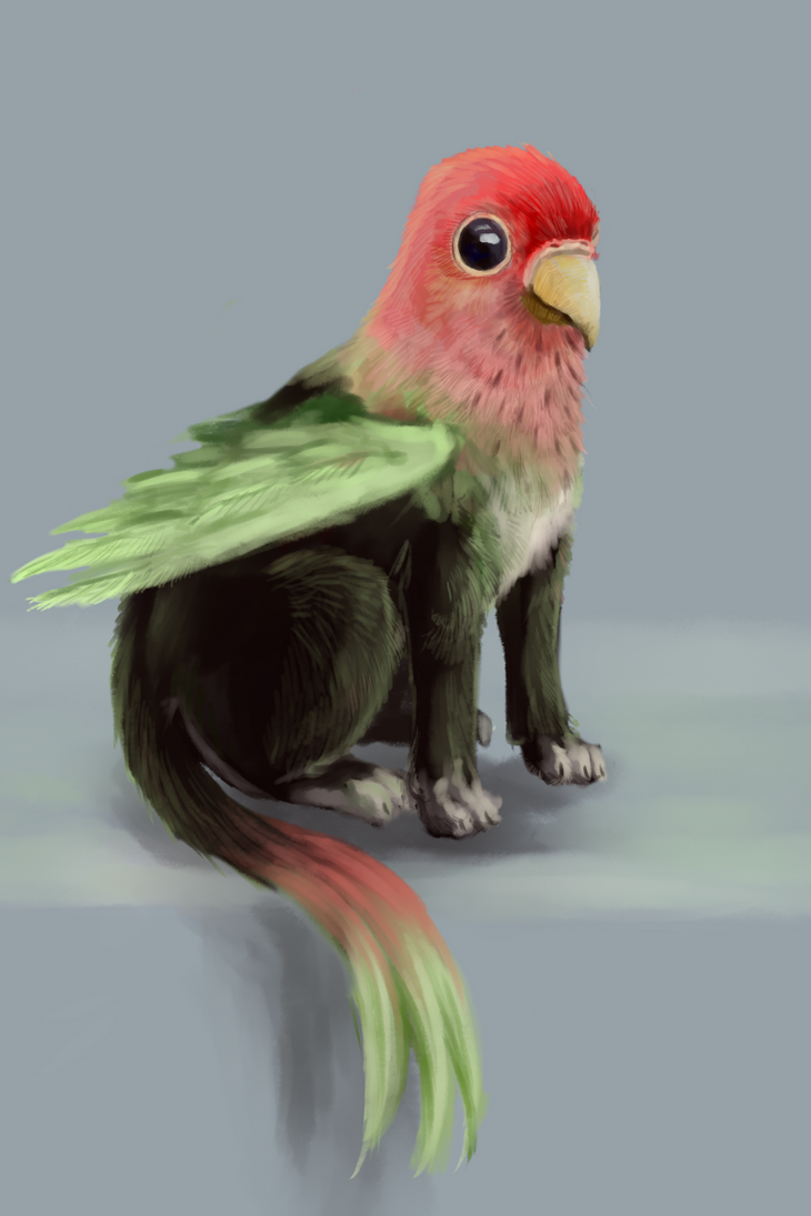 parrogryphon by Unycronk