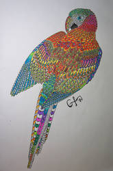Parrot by goingforawalk