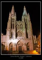 Burgos' Cathedral by cmunilla