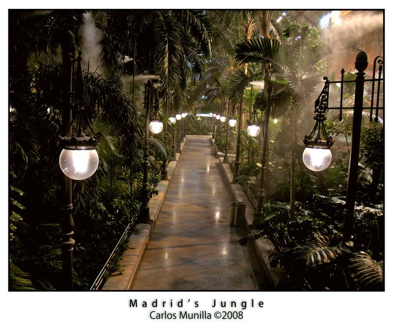 Madrid's Jungle by cmunilla
