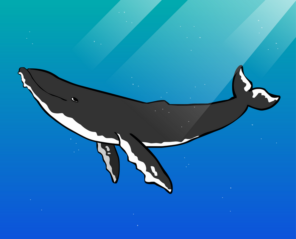 Humpback Whale by CheesyWhales on DeviantArt