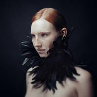 Raven by MichaelMagin