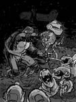 Raphael vs Mousers