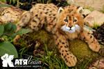 Cheetah Neville
