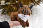 Small lynx