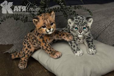 Wild kittens toy
