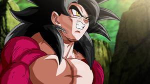 Xeno Goku in the Tournament of Power?