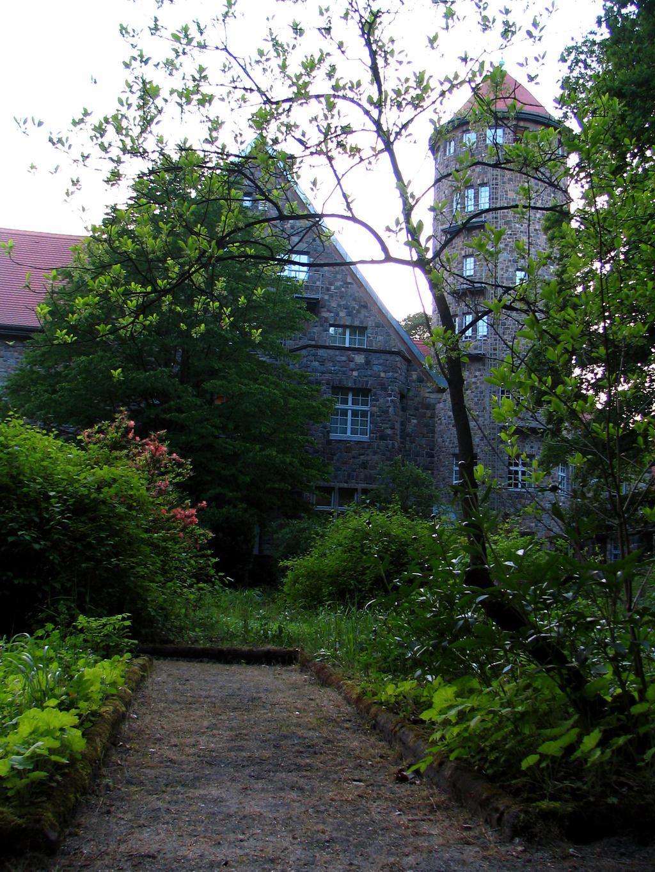 garden 08 by Pagan-Stock