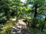 Path 03 by Pagan-Stock