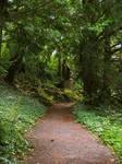 path 08