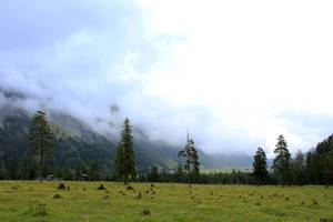 meadow 07 by Pagan-Stock