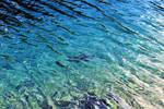 water texture 07