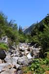 scenery 64