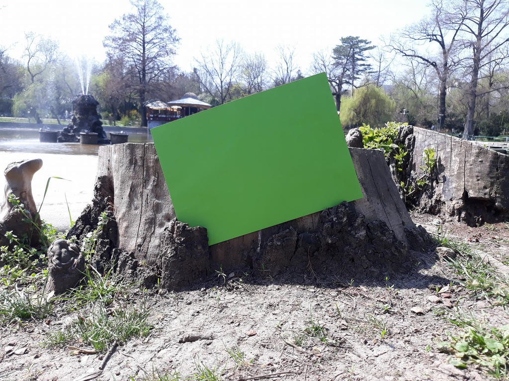 Green Screen Frame In the Nature by silviubacky