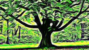 Tree edit attempy
