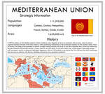 The Mediterranean Union