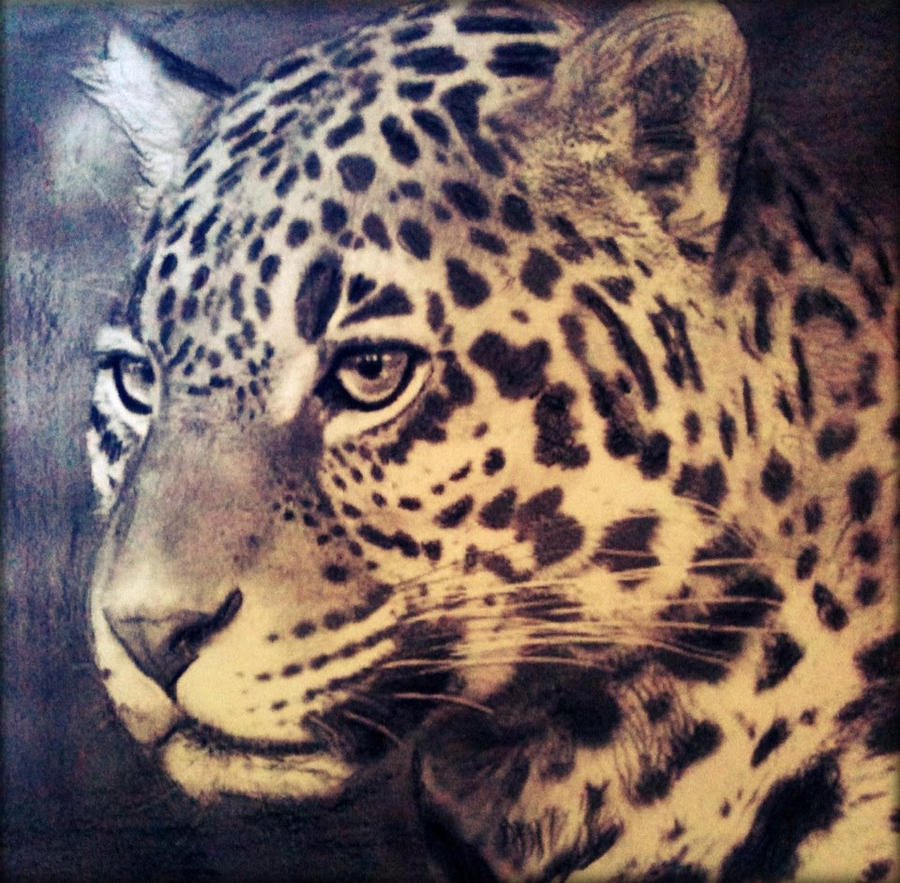 Black jaguar animal drawing - photo#4