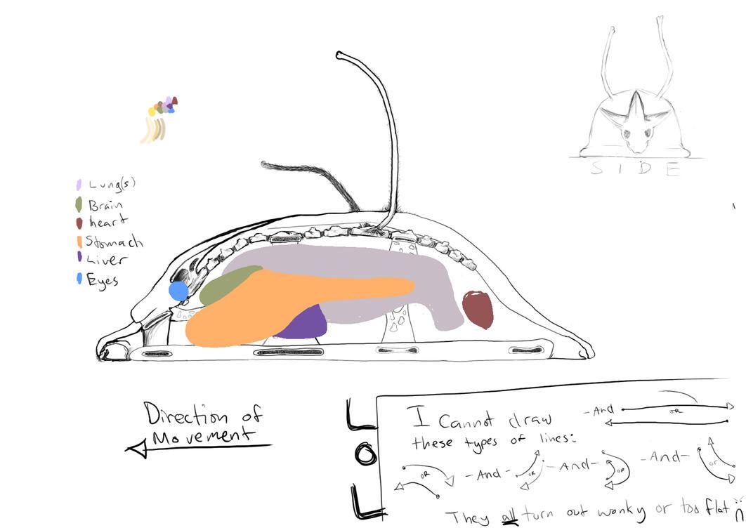 Slug thing - WIP by scaleofthought on DeviantArt