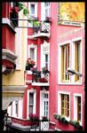 street of Algeria