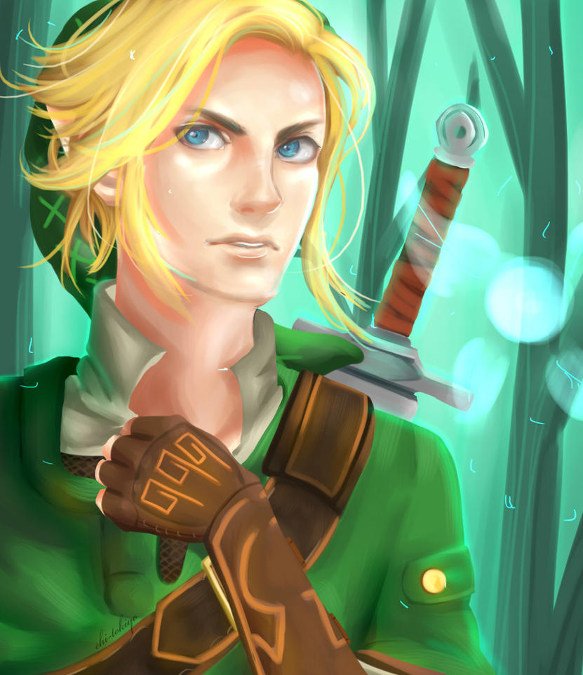 LoZ: Power Within by chi-tokiyo