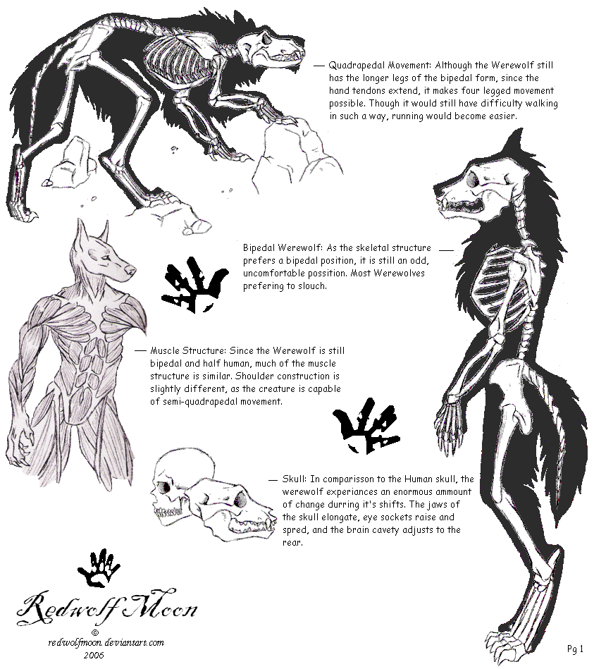 Ancient Werewolf Symbols And Meanings | www.imgkid.com ...
