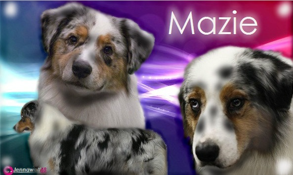 mazie chat What breed of dog is mazie from the movie marmaduke  it would help if you posted a picture of mazie  chat or rant, adult content, spam .