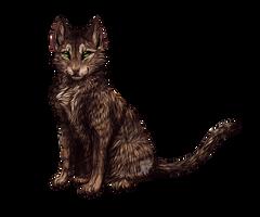 'Tiger da Cat' by PricklyAlpaca