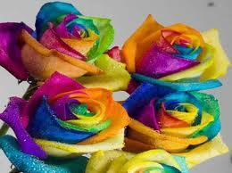 Roses For U by Slendy-DancePlz