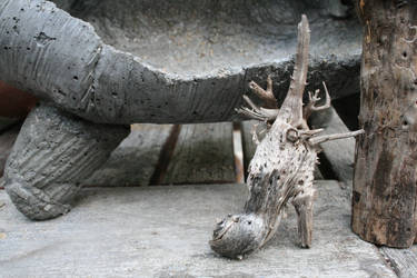 Strange Piece of Wood