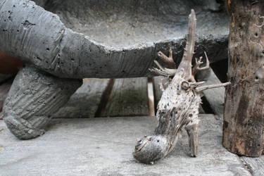 Strange Piece of Wood by shojakka