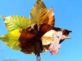 Autumn's Turkey by NaturesCreatures