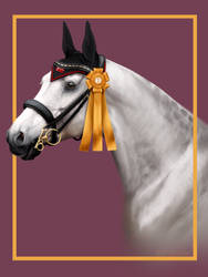 Winning Price - Zoubstance by BH-Stables
