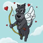 Cupid Scottish Terrier
