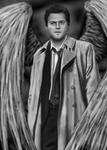 Spn - Castiel - Wings