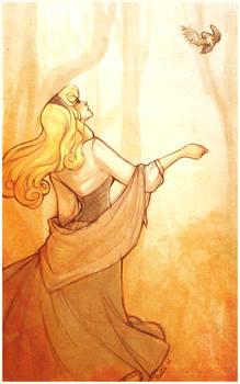 .Aurora.