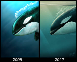 Diving Orca - 2008 and 2017 by SyKoticOrKa