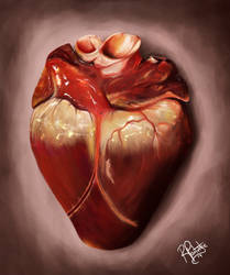 Heart Study by SyKoticOrKa