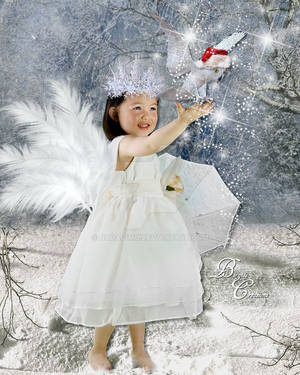 Christmas Angel 2014 by nudagimo