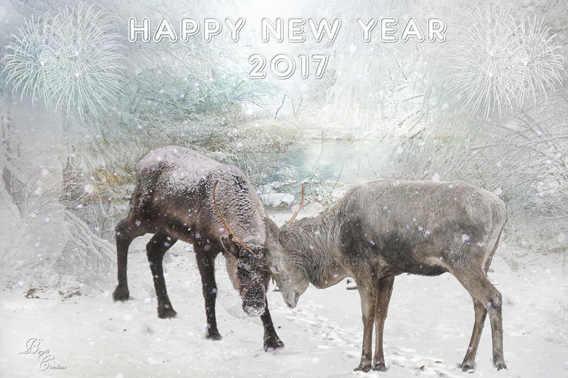 Happy New Year 2017 by nudagimo